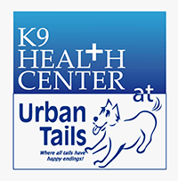 Hydro Therapy at K9 Health Center at Urban Tails